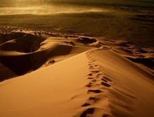 Притча о пустыне